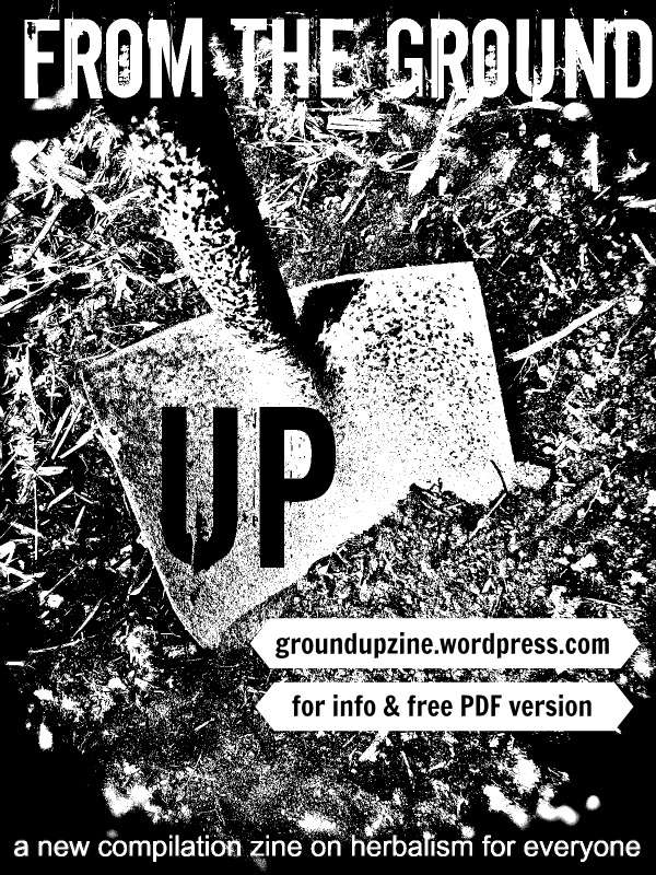 groundupzinewebflyer